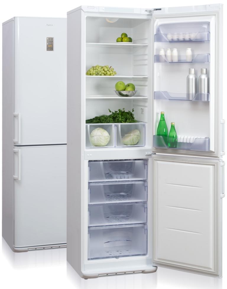 бирюса двухкамерный холодильник фото